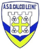Torneo Crescere Insieme Leinì (2008)